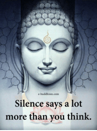 Memes, Buddhism, and Silence: e-buddhism.com  Silence says a lot  more than vou think,