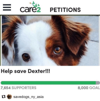 Repost @savedogs_ny_asia with @repostapp ・・・ This is the beloved dog 💜🐾 of a family in Santaquin city, Utah. Dexter got out back in October and nipped at a girl's leg, he did not break the skin and this dog has no previous bite history. A judge has ordered him to be killed 😭💔 Dexter is only 5 yrs old and the family is devastated. Please sign the petition that will go to the judge. Find it at ➡ thepetitionsite.com or the link is in my bio temporarily 🐶✏: e Care  PETITIONS  Help save Dexter  7,654 SUPPORTERS  8,000 GOAL  savedogs ny asia Repost @savedogs_ny_asia with @repostapp ・・・ This is the beloved dog 💜🐾 of a family in Santaquin city, Utah. Dexter got out back in October and nipped at a girl's leg, he did not break the skin and this dog has no previous bite history. A judge has ordered him to be killed 😭💔 Dexter is only 5 yrs old and the family is devastated. Please sign the petition that will go to the judge. Find it at ➡ thepetitionsite.com or the link is in my bio temporarily 🐶✏