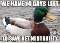 "Advice, Tumblr, and Animal: E  HAME  14  DAYS  LEFL,  TOSAVE NET NEUTRALITY <p><a href=""http://advice-animal.tumblr.com/post/168084049203/just-a-reminder"" class=""tumblr_blog"">advice-animal</a>:</p>  <blockquote><p>Just a reminder…</p></blockquote>"