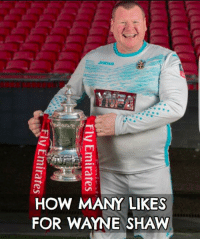 IT'S STORIES LIKE THIS AND YOUR EVERYDAY BLOKE, THAT MAKES THE FA CUP SO SPECIAL: e)  Jorna  HOW MANY LIKES  FOR WAYNE SHAW  Fly Emirates A  Fly Emirates  g(Emirates- IT'S STORIES LIKE THIS AND YOUR EVERYDAY BLOKE, THAT MAKES THE FA CUP SO SPECIAL