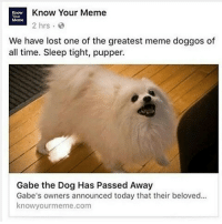 May you meme in another world, doggo...: E Know Your Meme  2 hrs  We have lost one of the greatest meme doggos of  all time. Sleep tight, pupper.  Gabe the Dog Has Passed Away  Gabe's owners announced today that their beloved...  knowyour meme com May you meme in another world, doggo...