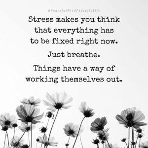 Memes, Work, and Best: e PeacefulMindPeacefulLife  Stress makes you think  that everything has  to be fixed right now.  Just breathe.  Things have a way of  working themselves out. Dream. Plan. Create. Work hard doing your best. Now give up your attachments to the results.  When your mind begins telling you you're not good enough, it's never going to work out, you're running out of time, just stop, take several deep breaths, and come into the present moment where all is well.  The mind will always play games with you and say false thoughts.  Stressing never helps, and always wears you out and ultimately makes you sick.