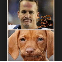 frustrated: e Peyton  frustrated  face  erected!