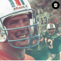 Birthday, Memes, and Happy Birthday: e Riddeli-s  MARINO  13 61,361 career passing yards.  Nine Pro Bowl trips. And a Gold @ProFootballHOF Jacket.  Let's all wish @MiamiDolphins legend @DanMarino a HAPPY BIRTHDAY! (via @nflthrowback) 🎉🐬 https://t.co/P53lddnqVP