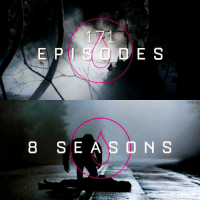 Memes, This Is the End, and 🤖: E S  8 S E A S O N S  TVD. IG [ TVDForever] — 171 episodes. 8 seasons. Thank you to the amazing cast and crew for 8 epic years full of love, friendships, adventures, characters, memories and storylines. I grew up with this show and now I finally have to say goodbye. The Vampire Diaries may have ended, but it will never be forgotten ❤ I love you all so much, thank you for being apart of my life 😭 tvd is over but as long as we continue to talk, write and make edits about it, it will be eternal and live on forever 💫 This is the end of an era. The Vampire Diaries has and forever will have a special place in my heart. It has been one hell of a ride.