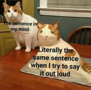 Say It, Mind, and Same: e sentence i  my mind  iterally the  same sentence  when I try to say  it out loud Truthfully
