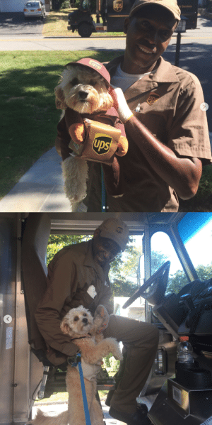 ups-dogs:Always wanting to pop up in the truck for some Love. Thank you for sharing Irene.: e Services ups-dogs:Always wanting to pop up in the truck for some Love. Thank you for sharing Irene.