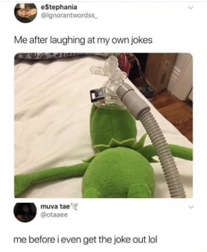 Lol, Tumblr, and Http: e$tephania  @ignorantwordss  Me after laughing at my own jokes  muva tae  @otaaee  me before i even get the joke out lol If you are a student Follow @studentlifeproblems​