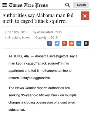 "News, Alabama, and Breaking News: E Times Free Press  LOGIN  Authorities say Alabama man fed  meth to caged 'attack squirrel'  June 18th, 2019  by Associated Press  in Breaking News  Copyright 2019  &  f  in  ATHENS, Ala  Alabama investigators say a  man kept a caged ""attack squirrel"" in his  apartment and fed it methamphetamine to  ensure it stayed aggressive.  The News Courier reports authorities are  seeking 35-year-old Mickey Paulk on multiple  charges including possession of a controlled  substance  X Guard dog? No thanks"