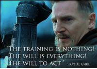 Quote time ~ Nightwing: E TRAINING IS NOTHING!  THE WILL IS EVERYTHING!  THE WILL TO ACT  RA'S AL GHUL Quote time ~ Nightwing