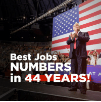 Best, Jobs, and  Numbers: E1  Best Jobs  NUMBERS  in 44 YEARST JOBS, JOBS, JOBS!