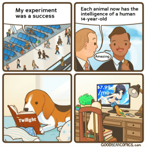 That's totally my favorite book: Each animal now has the  My experiment  intelligence of a human  14-year-old  was a success  Amazing  $7.99  /mo  Twilight  GOODBEARCOMICS.com That's totally my favorite book