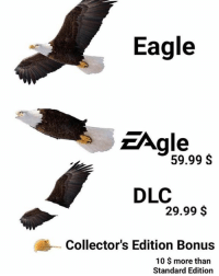 Lmao, Eagle, and Dank Memes: Eagle  ZAgle  59.99 S  DLC  29.99 $  Collector's Edition Bonus  10 $ more than  Standard Edition LMAO