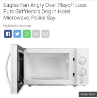 Adobe, Philadelphia Eagles, and Police: Eagles Fan Angry Over Playoff Loss  Puts Girlfriend's Dog in Hotel  Microwave, Police Say  Published 2 hours ago  Adobe Stock