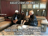 Be Like, Philadelphia Eagles, and Nfl: EAGLES FANS BE LIKE  fb: eddie vega  WHAT ARE THOSE SHINY THINGS  BEHIND THEM?