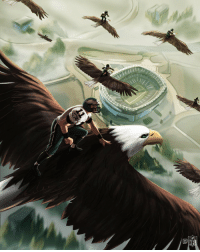 Philadelphia Eagles, Memes, and Home: .@Eagles fly home with the W! #FlyEaglesFly https://t.co/6RYnaKcXgr