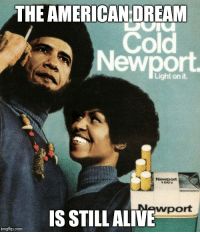 EAMERICAN-DREAM  Cold  Newport  wport  IS STILL ALIVE  imgflip.com YES WE CAN!