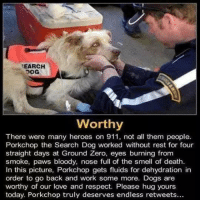 http://t.co/5N383hIuCx: EARCH  Worthy  There were many heroes on 911, not all them people.  Porkchop the Search Dog worked without rest for four  straight days at Ground Zero, eyes burning from  smoke, paws bloody, nose full of the smell of death  In this picture, Porkchop gets fluids for dehydration in  order to go back and work some more. Dogs are  worthy of our love and respect. Please hug yours  today. Porkchop truly deserves endless retweets... http://t.co/5N383hIuCx