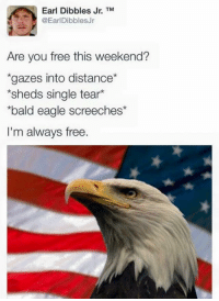 "Memes, Eagle, and Free: Earl Dibbles Jr. TM  @EarlDibblesJr  Are you free this weekend?  gazes into distance  sheds single tear*  bald eagle screeches*  I'm always free. <p>Always free via /r/memes <a href=""https://ift.tt/2rwaKKh"">https://ift.tt/2rwaKKh</a></p>"