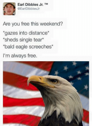 Eagle, Free, and Single: Earl Dibbles Jr. TM  @EarlDibblesJr  Are you free this weekend?  gazes into distance  sheds single tear*  bald eagle screeches*  I'm always free.