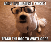 Funny, Love, and Meme: EARLV RETIREMENT PHASE  TEACH THE DOG TO WRITE CODE  DOWNLOAD MEME GENERATOR FROM HTTP://MEMECRUNCH COM