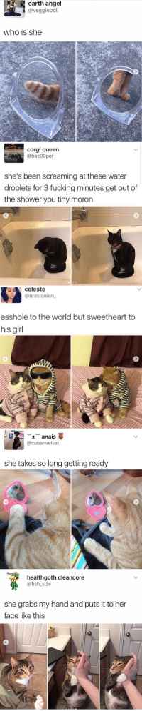 Cat tweets: earth  angel  @veggieboii  who is she   corgi queen  @baz00per  she's been screaming at these water  droplets for 3 fucking minutes get out df  the shower you tiny moron   celeste  @araslanian  asshole to the world but sweetheart to  his girl   ︶  오  @cubanvelvet  anais  she takes so long getting ready   healthgoth cleancore  @fish_size  she grabs my hand and puts it to her  face like this Cat tweets