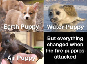A very dark day: Earth PuppyWater Puppy  But everything  changed when  the fire puppies  attacked  Air Puppy A very dark day