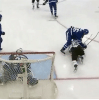 Memes, 🤖, and Romans: ease It doesn't matter if you're one of the game's superstars, Roman Polak will throw you to the ground if you touch his goaltender....even his backup! RomanPolak Benn Anger AngryPolak NHLDiscussion