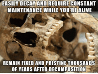 Pristine, Scumbag, and Teeth: EASILY DECAYAND REQUIRE CONSTANT  MAINTENANCE WHILE YOU'REALIVE  REMAIN FIXED AND PRISTINE THOUSANDS  OF YEARS AFTER DECOMPOSITION  made on impur Scumbag Teeth