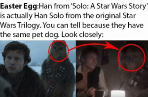 Cool little detail I noticed from the new Star Wars movie (no spoilers): Easter Egg:Han from 'Solo: A Star Wars Story  is actually Han Solo from the original Star  Wars Trilogy. You can tell because they have  the same pet dog. Look closely: Cool little detail I noticed from the new Star Wars movie (no spoilers)