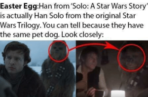 Star Wars Easter egg: Easter Egg:Han from 'Solo: A Star Wars Story  is actually Han Solo from the original Star  Wars Trilogy. You can tell because they have  the same pet dog. Look closely: Star Wars Easter egg