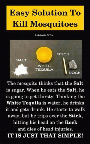 Head Injuries: Easy Solution To  Kill Mosquitoes  Truth Inside Of You  STICK  SALT  WHITE  TEQUILA  ROCK  The mosquito thinks that the Salt  is sugar. When he eats the Salt, he  is going to get thirsty. Thinking the  White Tequila is water, he drinks  it and gets drunk. He starts to walk  away, but he trips over the Stick,  hitting his head on the Rock  and dies of head injuries.  IT IS JUST THAT SIMPLE!