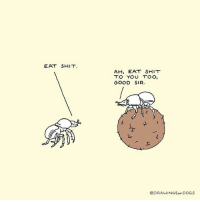 9gag, Dogs, and Memes: EAT SHIT  AH, EAT SHIT  TO YOU TOO,  GOOD SIR  @DRAWINGSoF DOGS Good manners cost nothing. 💩 cr: @drawingsofdogs - - 9gag greetings comic