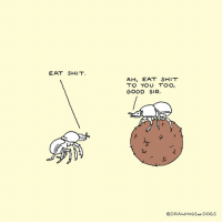 """Dogs, Omg, and Shit: EAT SHIT.  AH, EAT SHIT  TO YOU TOO,  GOOD SIR.  @DRAWINGSoF DOGS <p><a href=""""https://omg-images.tumblr.com/post/166746655512/wholesome-beetles"""" class=""""tumblr_blog"""">omg-images</a>:</p>  <blockquote><p>Wholesome Beetles</p></blockquote>"""