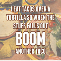 Club, Tumblr, and Best: EAT TACOSOVER A  TORTILLA SO WHEN THE  STUFF FALLS OUT  BOOM  ANOTHER TACO laughoutloud-club:  Best Way To Eat Tacos