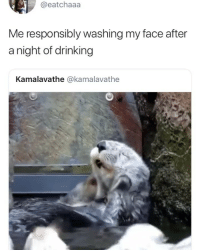 Drinking, Girl Memes, and Face: @eatchaaa  Me responsibly washing my face after  a night of drinking  Kamalavathe @kamalavathe 😂😂😂😂😂