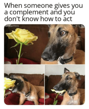 Eating compliments and feelings!: Eating compliments and feelings!