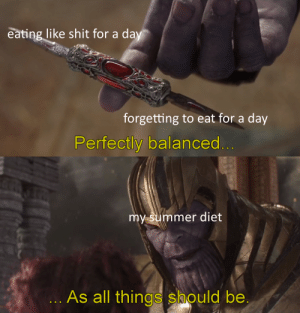 Meme, Shit, and Summer: eating like shit for a day  forgetting to eat for a day  Perfectly balanced...  my summer diet  ... As all things should be relatable meme#4269