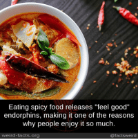"spicy food: Eating spicy food releases ""feel good""  endorphins, making it one of the reasons  why people enjoy it so much.  weird-facts.org  @facts weird"