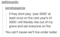 Fire, Live, and Water: eatitrecardo  penelopgarcia:  if they dont play 'year 3000' at  least once on the new year's of  3000 i will literally rise out of my  grave and set everyone on fire  You can't cause we'll live under water My song