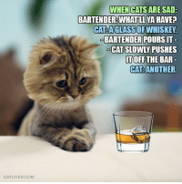 Funny, Bartending, and Whiskey: EATLIVER.COM  WHEN CATS ARE SAD  BARTENDER WHATLLYA HAVE?  CAT AGLASS OF WHISKEY.  BARTENDER POURSIT  TOFF THE BAR  CATRANOTHER. When Cats Are Sad…