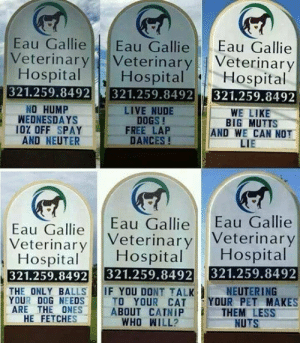 Dogs, Tumblr, and Blog: Eau Gallie Eau Gallie Eau Gallie  Veterinary Veterinary Veterinary  HospitalHospital  Hospital  321.259.8492 321.259.8492 321.259.8492  NO HUMP  WEDNESDAYS  LIVE NUDE  DOGS !  WE LIKE  BIG MUTTS  AND WE CAN NOT  LIE  I0% OFF SPAY FREE LAP  AND NEUTER  DANCES!  Eau Gallie Eau Gallie Eau Gallie  Veterinar Veterinary Veterinary  HospitalHospital Hospital  321.259.8492 321.259.8492 321.259.8492  THE ONLY BALLSIF YOU DONT TALK  NEUTERING  YOUR DOG NEEDSTO YOUR CAT YOUR PET MAKES  ABOUT CATNIP  WHO WILL?  ARE THE ONES  THEM LESS  NUTS  HE FETCHES epicjohndoe:  Clever Vet