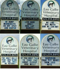 <p>Creative Veterinary Signs.</p>: Eau GallieEau GallieEau Gallie  VeterinaryVeterinary Veterinary  Hospital Hospital  Hospital  321.259.8492 321.259.8492 321.259.8492  NO HUMP  WEDNESDAYS  LIVE NUDE  DOGS!  WE LIKE  BIG MUTTS  AND WE CAN NOT  LIE  IO% OFF SPAY FREE LAP  AND NEUTER  DANCES !  Eau Gallie Eau Gallie Eau Gallie  Veterinary Veterinary  HospitalHospital Hospital  321.259.8492 321.259.8492 321.259.8492  NEUTERING  THE ONLY BALLS-IIF YOU DONT TALK.  YOUR DOG NEEDS  ARE THE ONES  TO YOUR CATYOUR PET MAKES  ABOUT CATNIP  WHO WILL?  THEM LESS  NUTS  HE FETCHES <p>Creative Veterinary Signs.</p>