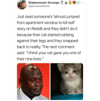 "Memes, Reddit, and Butterfly: @  Ebejeevez ner Scrooge E.  @jeeveswilliams  Just read someone's 'almost jumped  from apartment window to kill self""  story on Reddit and they didn't do it  because their cat started rubbing  against their legs and they snapped  back to reality. The next comment  said: "" think your cat gave you one of  their nine lives."" 😿😿😿 @x__social_butterfly_x"