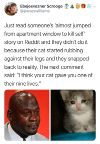 "Reddit, Jumped, and Reality: Ebejeevez ner Scrooge  @jeeveswilliams  Just read someone's 'almost jumped  from apartment window to kill self""  story on Reddit and they didn't do it  because their cat started rubbing  against their legs and they snapped  back to reality. The next comment  said: ""think your cat gave you one of  their nine lives."" Now don't go spending it all in one place"