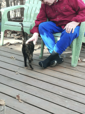 """Husband's 81 yr old grandpa with a """"cat he doesn't care for"""" named Mama (name he gave her lol) She comes in the house while he makes her breakfast and built her a waterproof structure with styrofoam insulation.: ECANIL Husband's 81 yr old grandpa with a """"cat he doesn't care for"""" named Mama (name he gave her lol) She comes in the house while he makes her breakfast and built her a waterproof structure with styrofoam insulation."""
