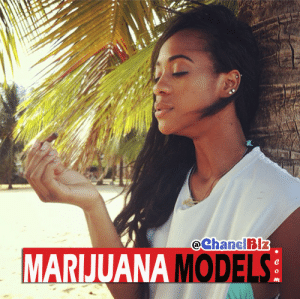 """Instagram, Paradise, and Tumblr: eChanelBIz  MARIJUANA MODEL  0  0 marijuanamodels:  Marijuana Model: ChanelBlz via Instagram 