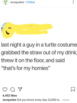 """Turtle, Thathappened, and Day: ecoquotes Follow  last night a guy in a turtle costume  grabbed the straw out of my drink,  threw it on the floor, and said  """"that's for my homies""""  6,452 likes  ecoquotes Did you know every day 22,000 to...more Yeh righteo"""
