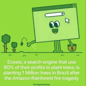 Time to drop Google: $  Ecosia, a search engine that use  80% of their profits to plant trees, is  planting 1 Million trees in Brazil after  the Amazon Rainforest fire tragedy  The Hoppy Broodcost  X Time to drop Google