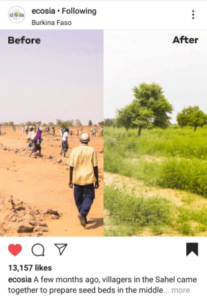 Instagram, The Middle, and Sia: ecosia Following  EC  SIA  Burkina Faso  After  Before  13,157 likes  ecosia A few months ago, villagers in the Sahel came  together to prepare seed beds in the middle... more If Mr Beast promotes ecosia then Morgz will do the same. I see this as an absolute win. https://www.instagram.com/p/BvwQOpqAIQ9/?igshid=9xx5tzktuedd